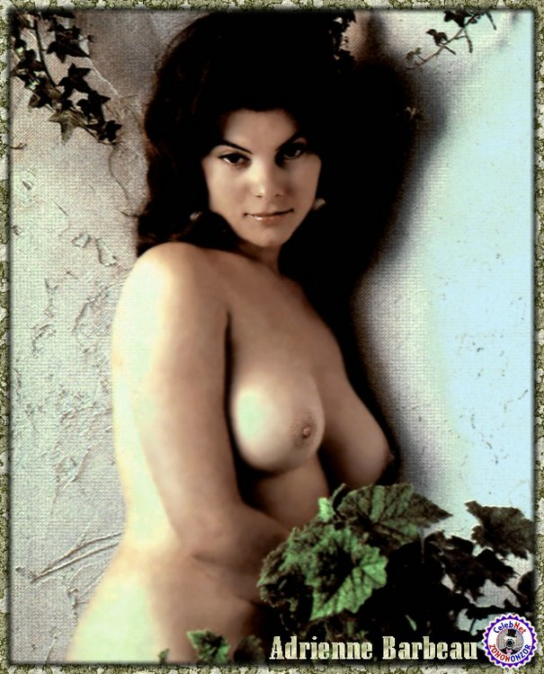 Charming message adrienne barbeau porn not